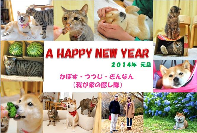 2014年新年のご挨拶_a0126590_112542.jpg