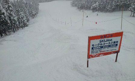 2014元旦 初滑り in スキージャム勝山_f0163105_1324692.jpg