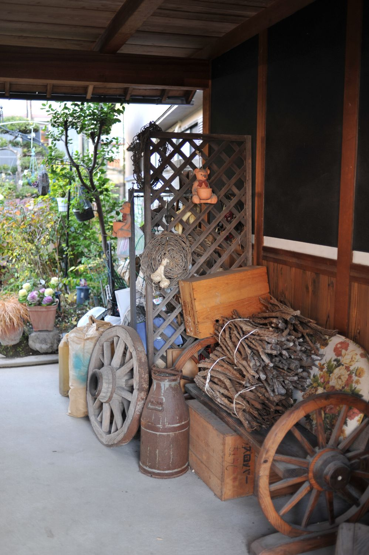 コムギと初詣_b0069128_1940846.jpg