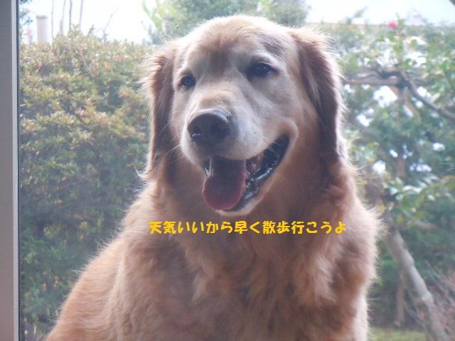 f0114128_1850368.jpg