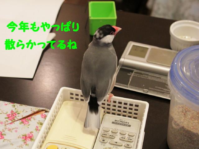 b0158061_20343127.jpg
