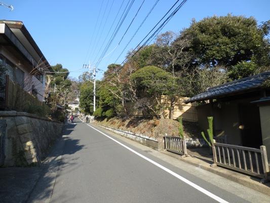 元日の鎌倉_c0310571_05033535.jpg