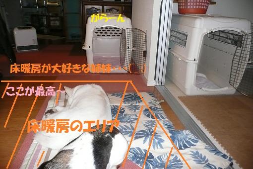 f0121712_14541060.jpg
