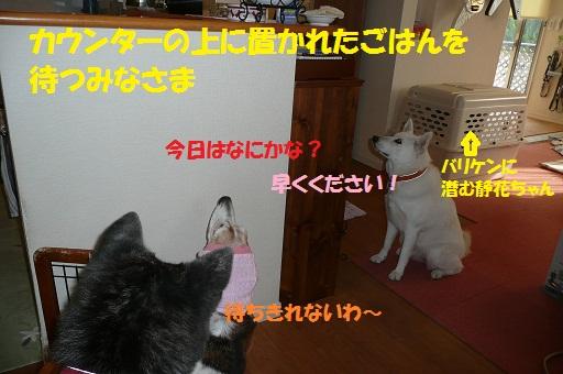 f0121712_15382685.jpg