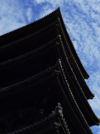 興福寺_f0315034_12412617.jpg