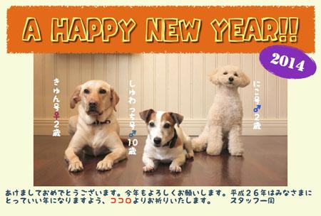 A HAPPY NEW YEAR!!_a0244751_16211785.jpg