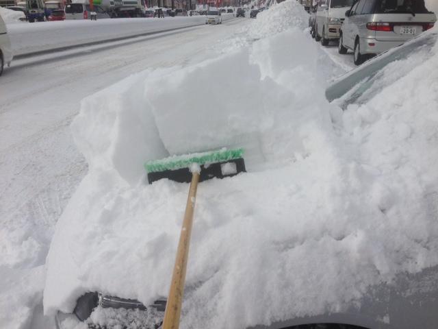 雪はんぱねー(^_^;)明日排雪だから出せるだけださねば_b0127002_1351725.jpg