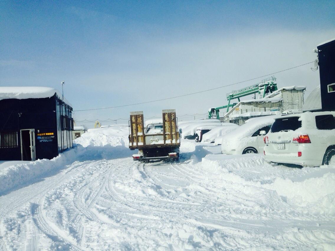 東京オートサロン準備の予定が除雪始めに、明寿ブログ、ランクル200ディーゼル_b0127002_2104868.jpg