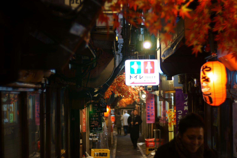 新宿  謹賀新年しょんべん横丁_b0061717_23403590.jpg