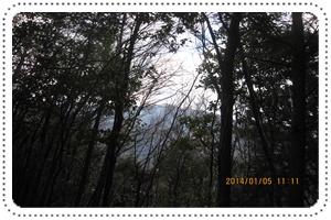 f0193521_1933621.jpg