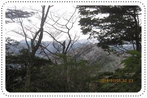 f0193521_19365412.jpg