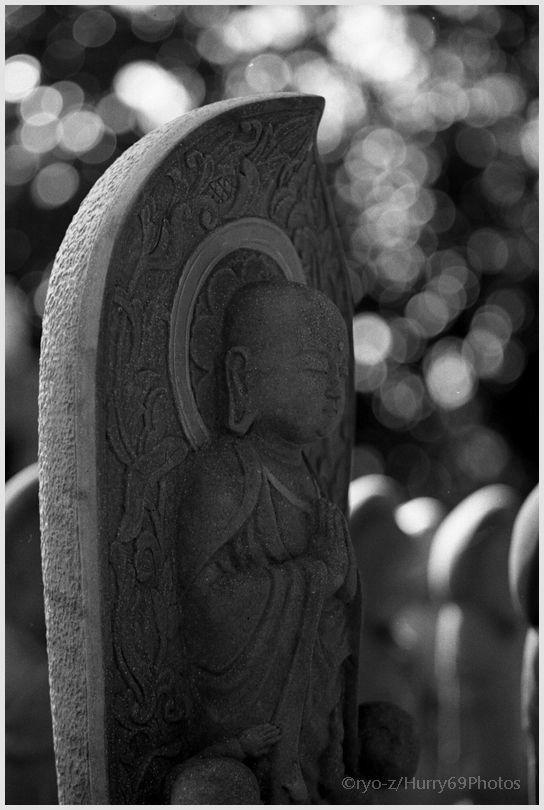 なむ~ Leica M3_e0063851_17252394.jpg