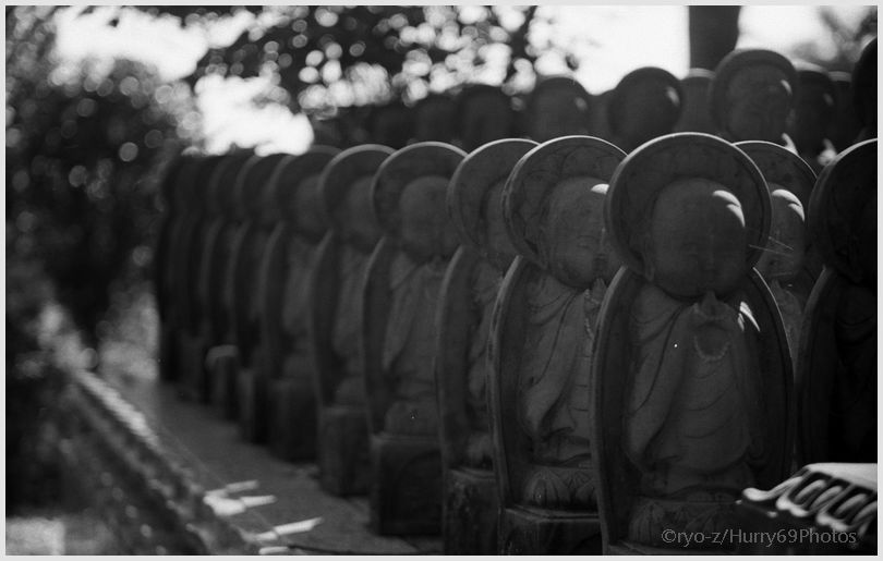 なむ~ Leica M3_e0063851_17272921.jpg