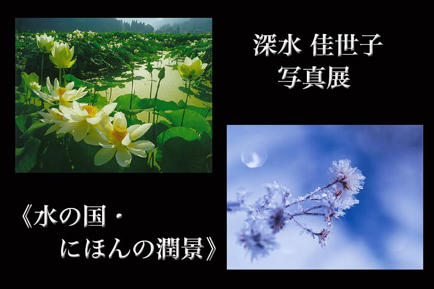 b0167256_21475054.jpg
