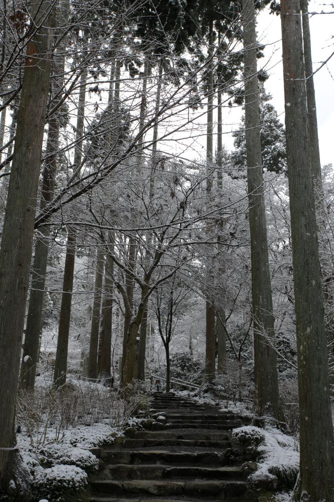 雪景色 2013 <大原 三千院>             _f0021869_22234426.jpg