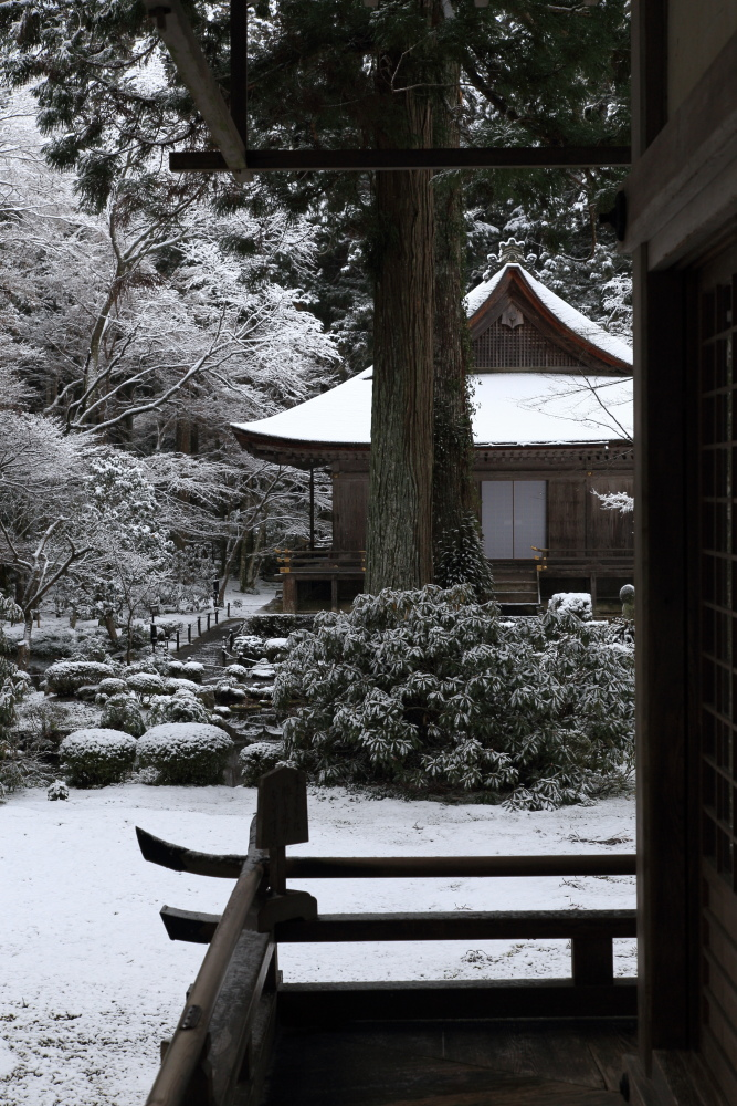 雪景色 2013 <大原 三千院>             _f0021869_22241187.jpg