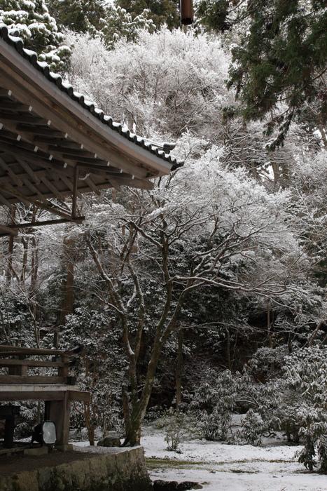 雪景色 2013 <大原 三千院>             _f0021869_22251721.jpg