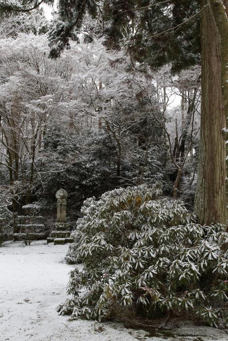 雪景色 2013 <大原 三千院>             _f0021869_22255079.jpg