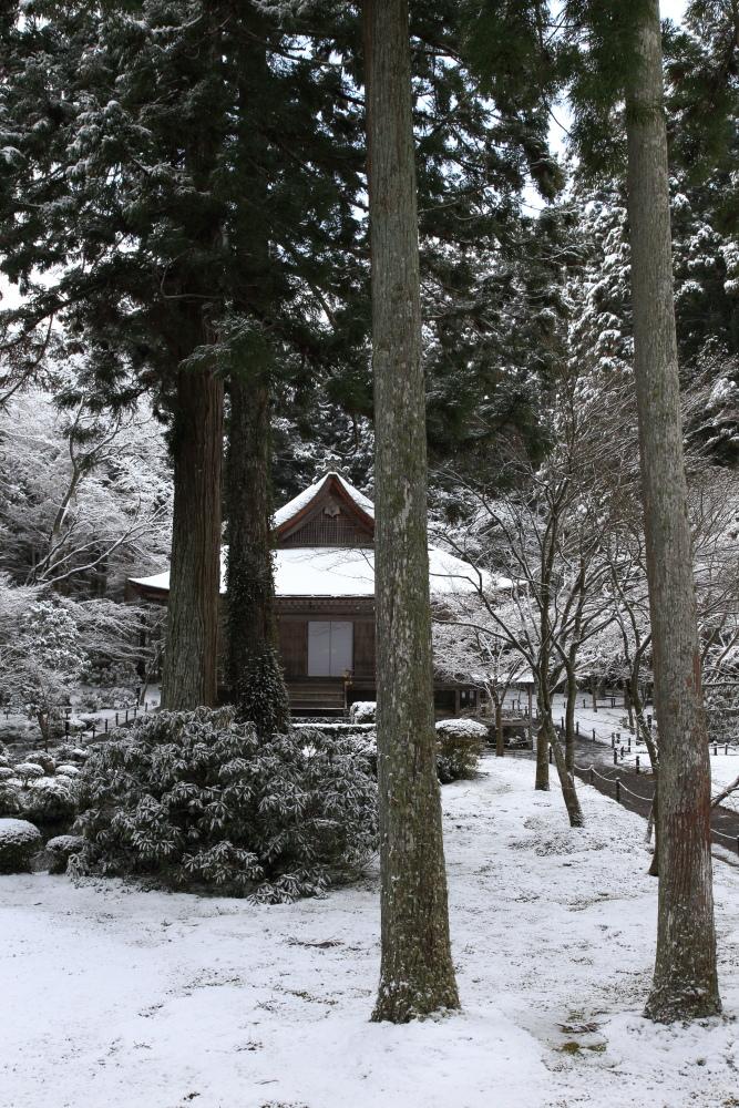 雪景色 2013 <大原 三千院>             _f0021869_22255176.jpg