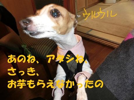 f0223972_6441981.jpg