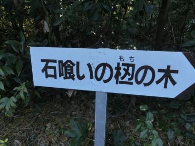 b0193480_1631588.jpg