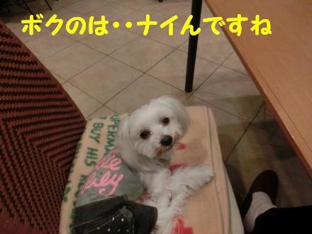 b0193480_16442485.jpg