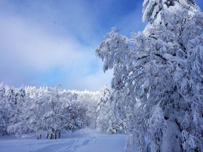 真冬のツーリング_f0096216_18172563.jpg