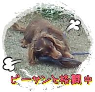 b0153121_16512680.jpg