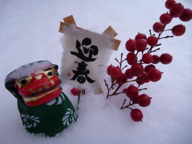 新年明けましておめでとうございます!_c0225621_15335145.jpg