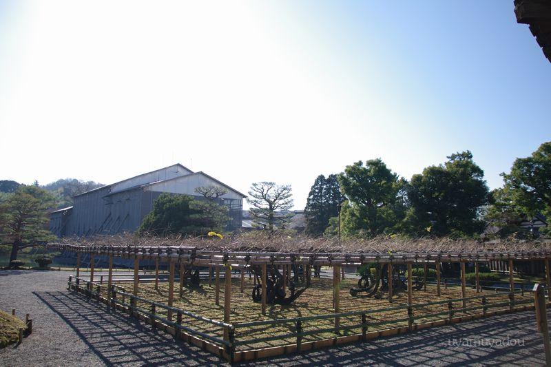 京都_a0157263_15185117.jpg
