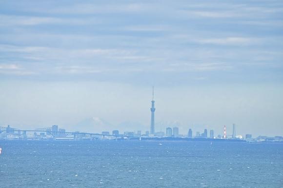 真冬の海ほたる_a0126590_2285212.jpg