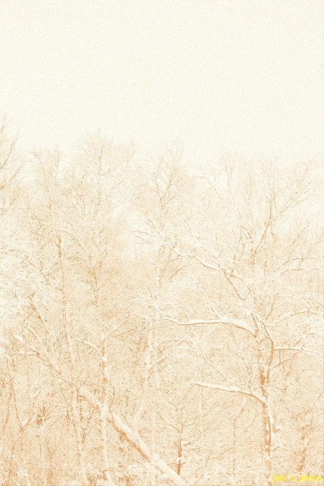 暖かい明るさと暖かい暗さ_a0158797_07389.jpg