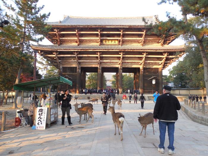 約15年ぶりに東大寺へ。_d0116009_10215134.jpg