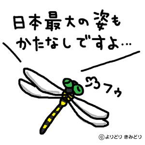 b0044915_14434348.jpg