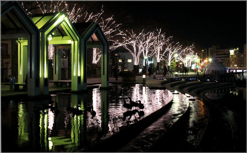「LEDに彩られる水都・徳島の風景」_d0133024_1036247.jpg