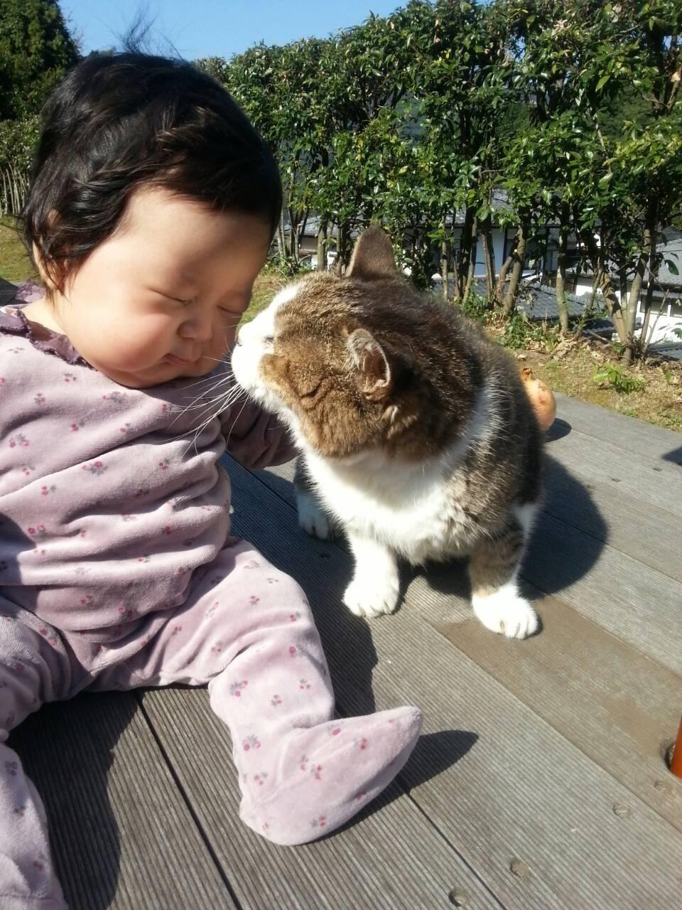 愛猫の死_d0237757_07543163.jpg