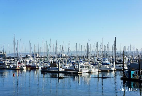 Monterey, CA  モントレー_e0253364_9132697.jpg