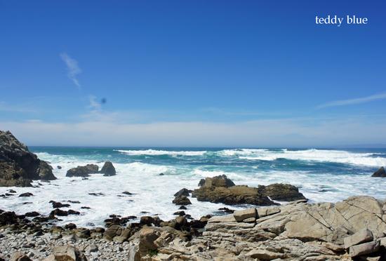 Monterey, CA  モントレー_e0253364_9142238.jpg