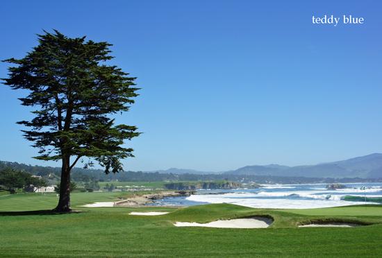 Monterey, CA  モントレー_e0253364_9143586.jpg