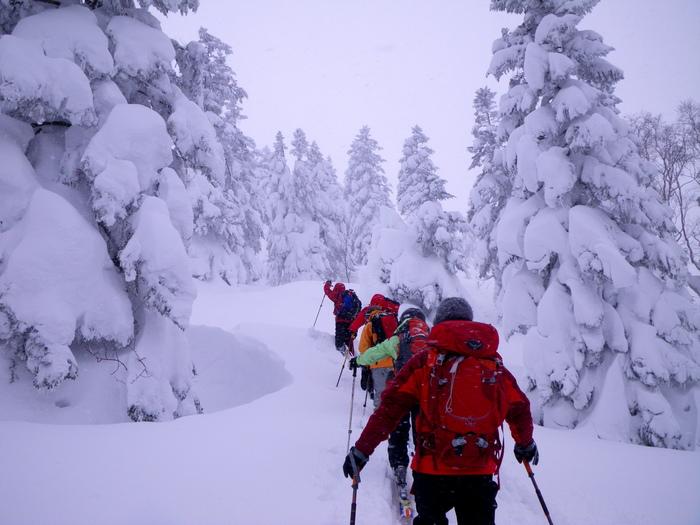後生掛温泉スキーツアー(その2) ~ 2013年12月29日_f0170180_23363320.jpg