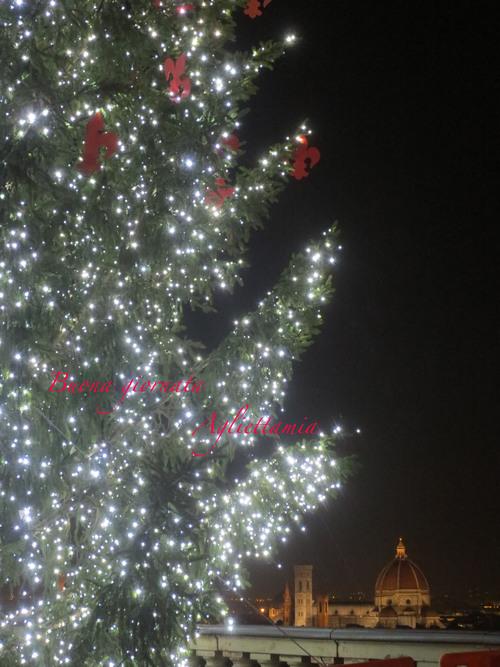 最終日に見れた〜〜!!ミケランジェロ広場のクリスマスツリー★_c0179785_630274.jpg