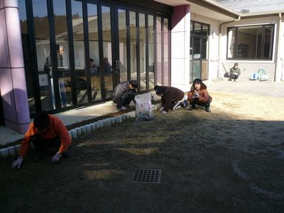1/7 中庭の花壇にて_a0154110_1373562.jpg