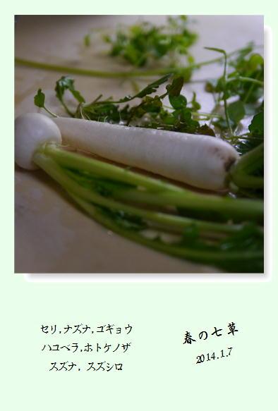 七草_f0292335_16201334.jpg