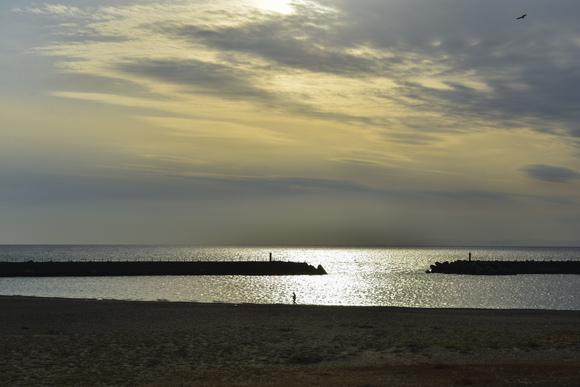 海辺の道の駅から太平洋遠望_d0246136_178117.jpg