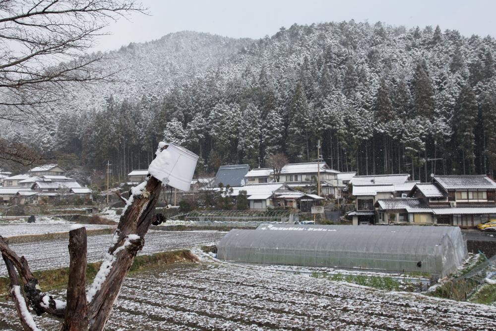 雪景色 2013 <大原>             _f0021869_2334343.jpg