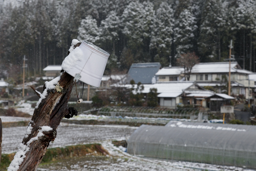 雪景色 2013 <大原>             _f0021869_23345057.jpg