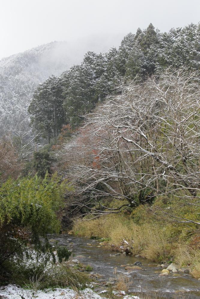 雪景色 2013 <大原>             _f0021869_23352565.jpg