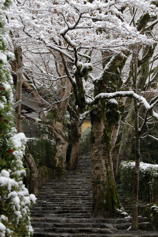 雪景色 2013 <大原>             _f0021869_23374961.jpg