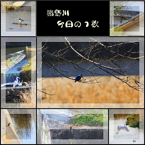 c0216787_1464435.jpg