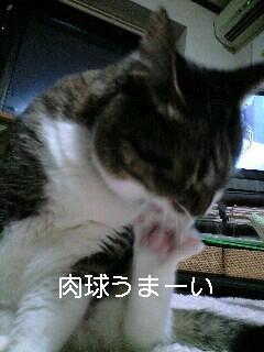 c0035001_1724961.jpg